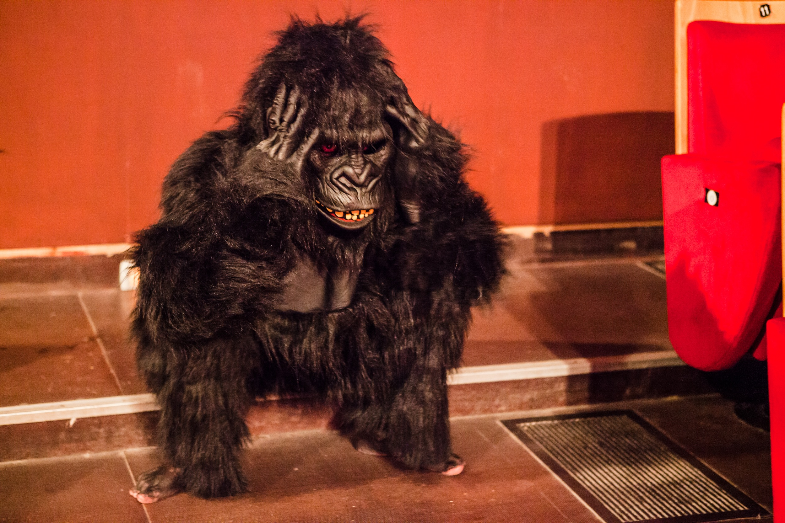 Fritz Faust Gorilla